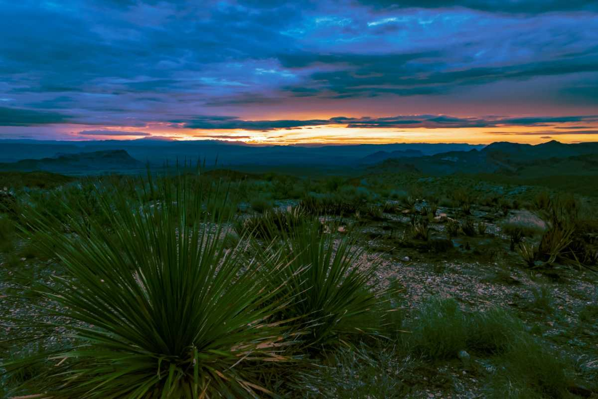 Big Bend in Photos